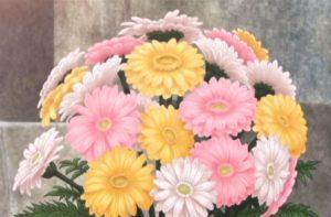 Tari Tari, chrysanthemum, 菊